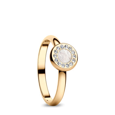 Bering Innenring 577-25-X1 Element Gold/Perlmutt
